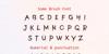 SomeBrush Bold Font poster