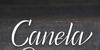 Canela Bark Personal Use Font handwriting floor