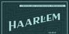 Haarlem Serif Demo Font screenshot poster