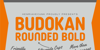 Budokan Rounded Font poster
