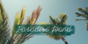 Olster Font tree palm tree