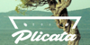 Plicata PERSONAL USE ONLY Font water text
