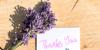Adhelphia Font flower