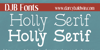 DJB Holly Serif Font text