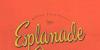 Esplanade Script PERSONAL USE Font handwriting design