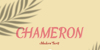 Chameron Font poster