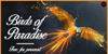 Birds of Paradise  Personal use Font fireworks