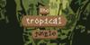 The tropical jungle Font text design