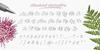Milasian Circa PERSONAL Font handwriting text