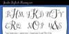 Janda Stylish Monogram Font text handwriting