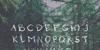 kutoen Font tree handwriting