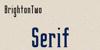 BrightonTwo Sans NBP Font typography design