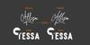 Allison Tessa Signature Font design text
