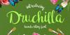 Druchilla Font handwriting text
