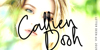 Callien Pooh Font poster