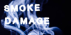 Smokedamage_demo Font invertebrate animal