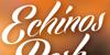 Echinos Park Script PERSONAL US Font design typography