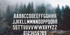 Brewmaster Gothic Demo Font tree outdoor