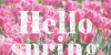 Filigran Font candy flower