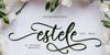 Estele Font poster