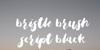 Bristle Brush Script Demo Font mountain text