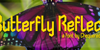 Butterfly Reflect Font indoor concert