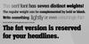 Vacer Serif Personal Font screenshot font