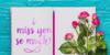 in blossom vintage Font flower rose