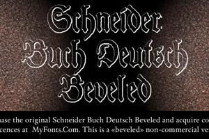 Schneider Buch Deutsch Beveled