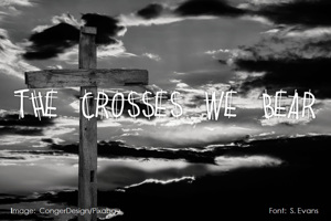 THE CROSSES WE BEAR
