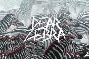 Dear Zebra