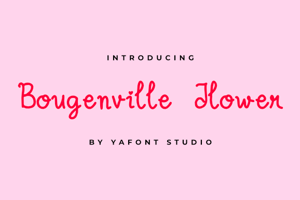 Bougenville Flowers
