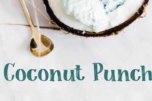Coconut Punch DEMO