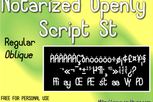 Notarized Openly Script St