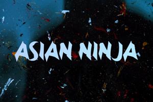 a Asian Ninja