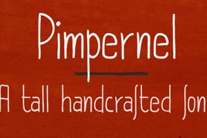 DK Pimpernel