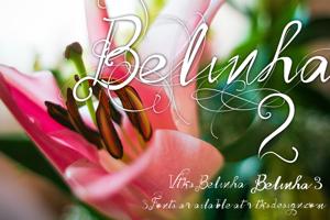 Vtks Belinha