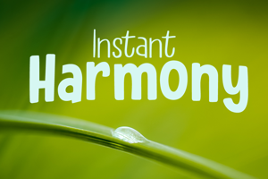 Instant Harmony