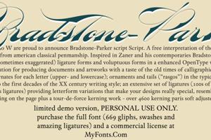 Bradstone-Parker Script Limited