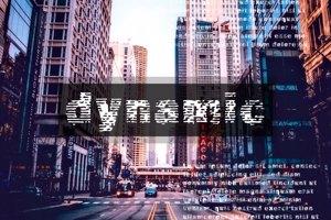 Vtks Dynamic