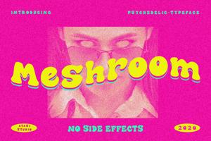 The Meshroom