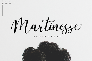 Martinesse