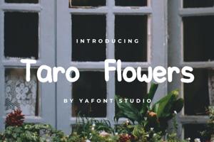 Taro Flowers