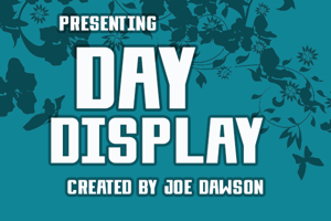 Day Display