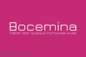 Bocemina