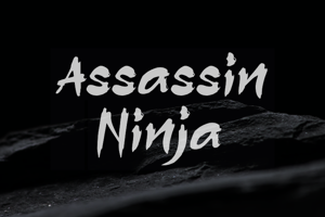 a Assassin Ninja