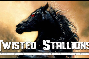 Twisted Stallions
