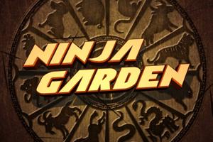 Ninja Garden