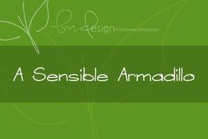 A Sensible Armadillo