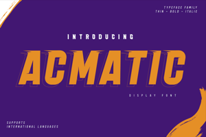 Acmatic Personal